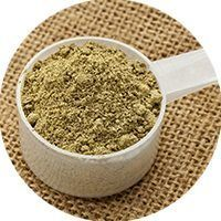hemp protein preview