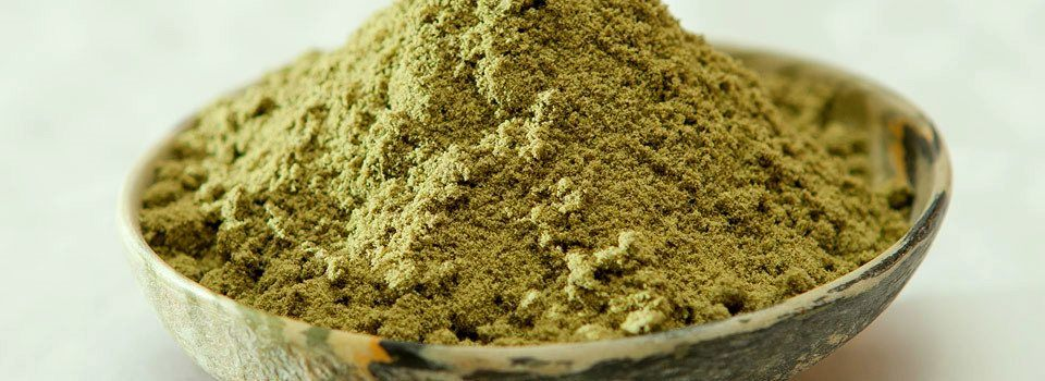 Top 6 Things To Consider When Buying Hemp Protein – Ministry