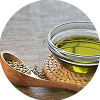 hemp seed oil preview