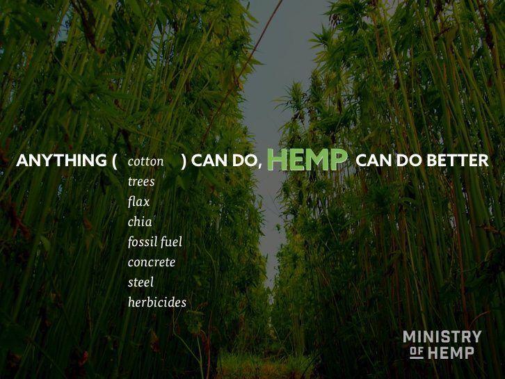 hemp's diverse applications
