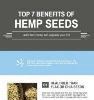 Hemp Seed Benefits Infographic Snapshot