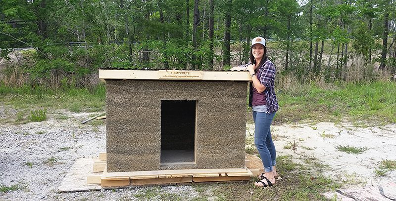 doghouse built from hempcrete
