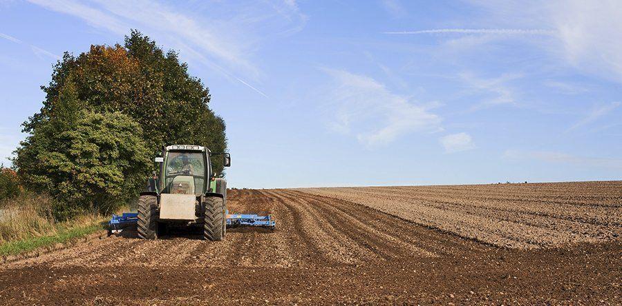 colorado hemp farming water rights