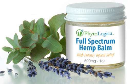 PhytoLogica Full Spectrum Hemp balm combines cbd oil with coconut oil, beeswax, and the fresh scent of lavender.