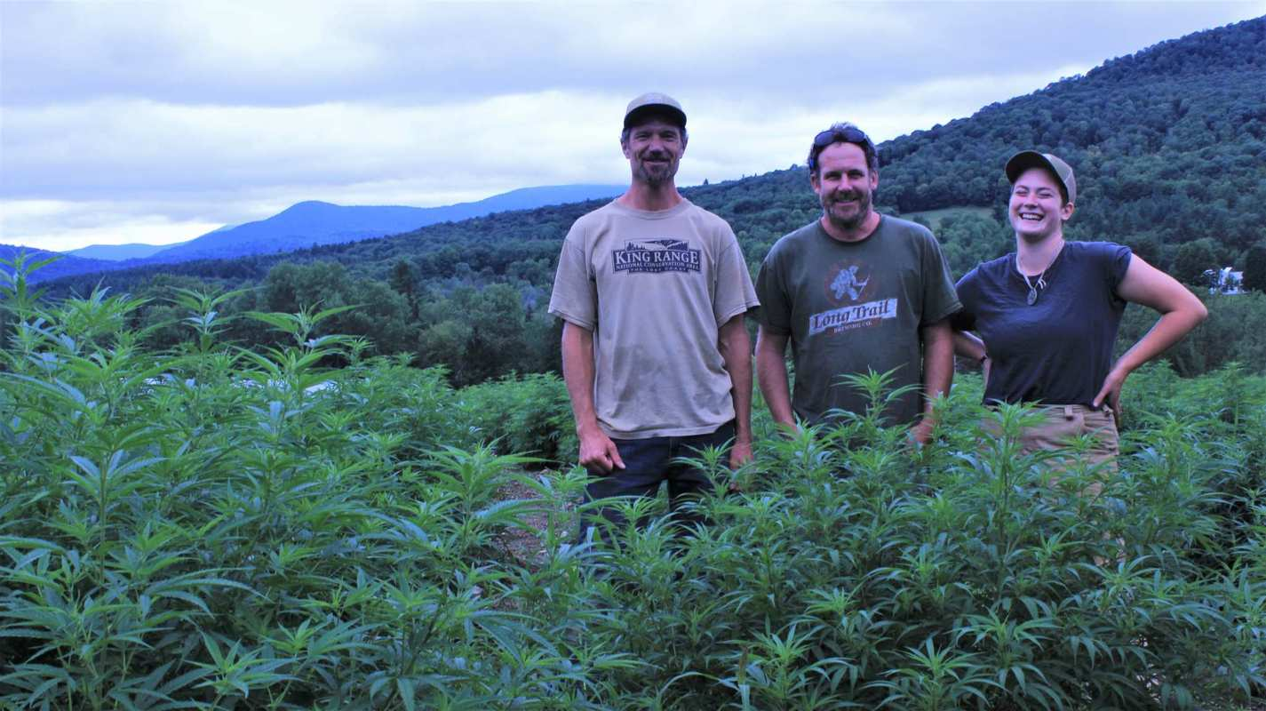 Part of the Luce Farm team stands in their hemp field (left to right): Jesse, Joe Pimentel, and Robin Chadwell.