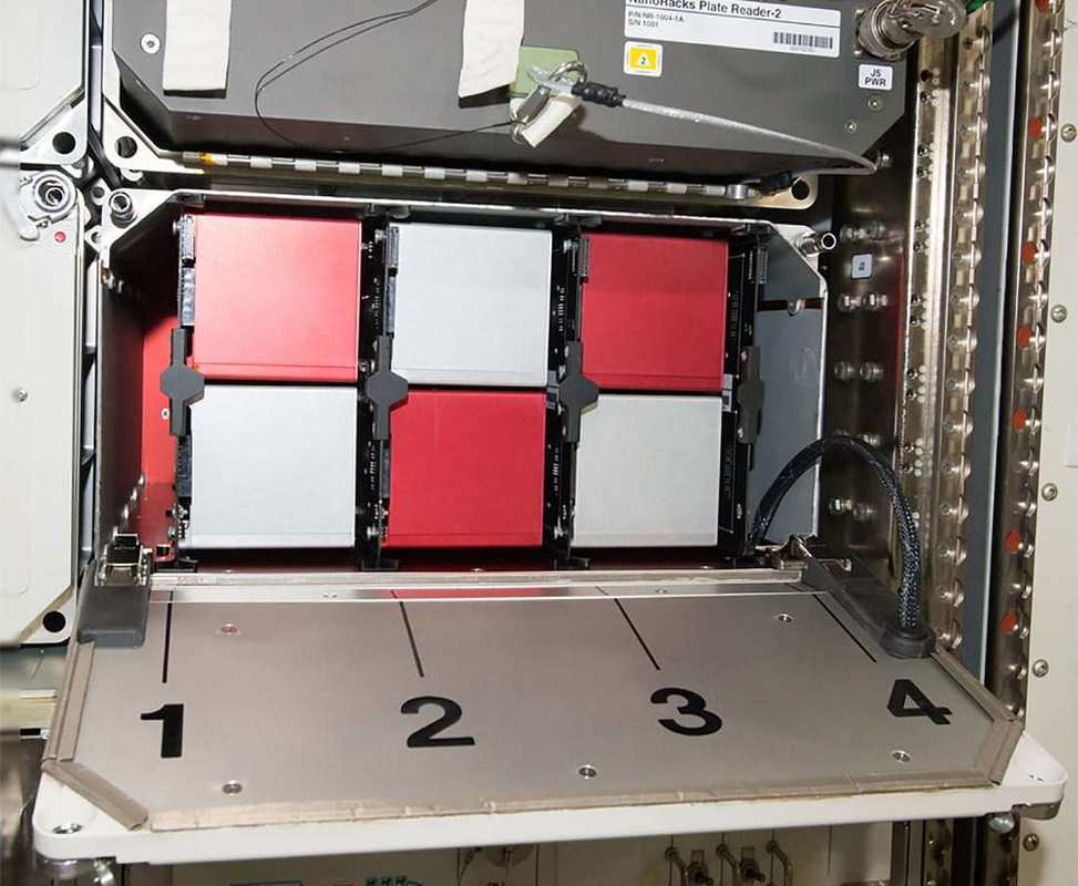 """Space Tango's module on the International Space Station features multiple """"CubeLabs,"""" modular research labs each the size of a box of tissues. The firm will soon be growing hemp in space in one of these labs."""