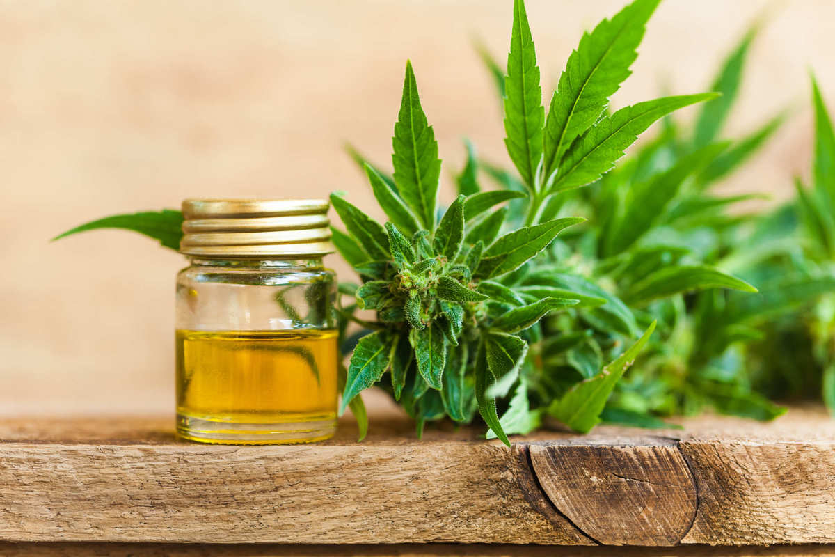 CBD oil in a glass jar sits on a table top near a hemp bud. CBD oil derived from hemp can be legally obtained in all 50 states.