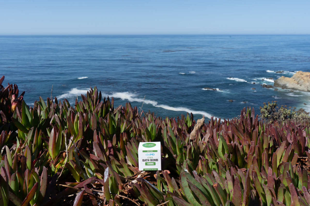 A cbdMD CBD Bath bomb sits among the natural wild greenery on the shore of a beach, with the ocean in the background. cbdMD CBD Bath Bombs helped our reviewer relax with 100mg of potent cannabidiol.