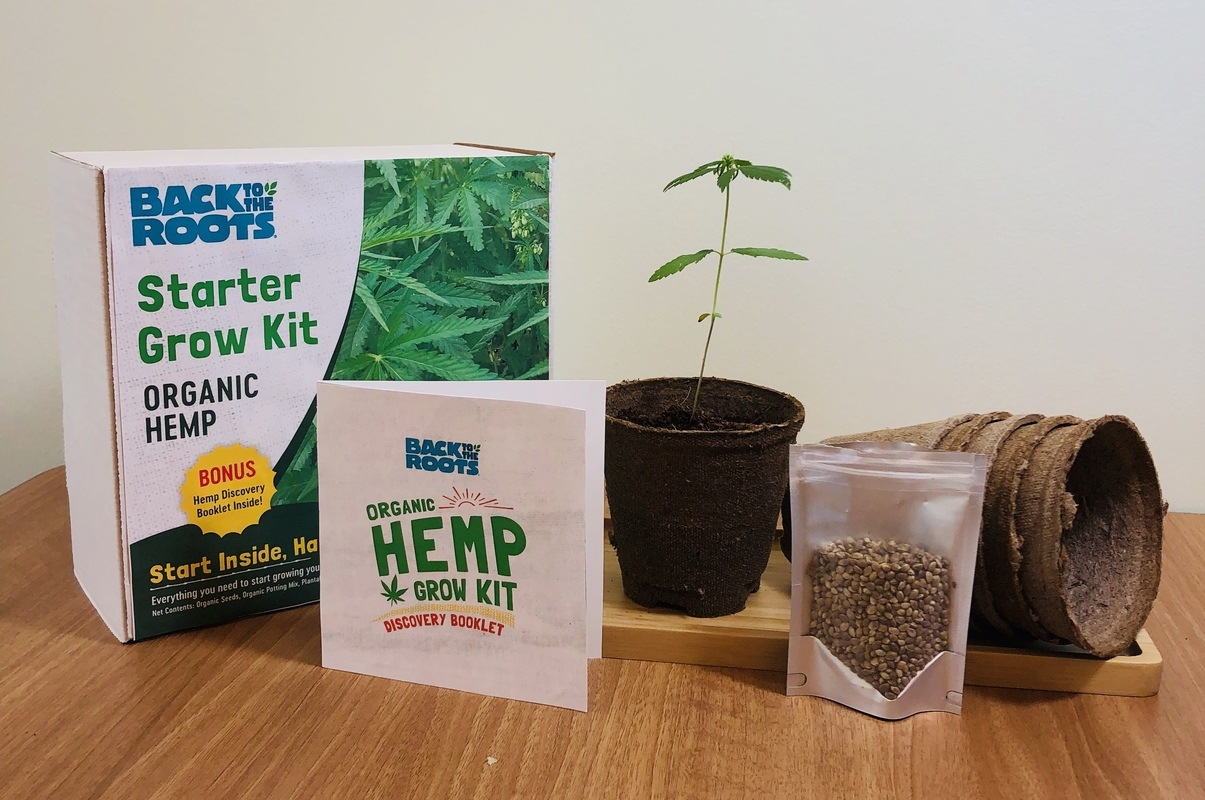 Photo: The contents of Back To The Roots Hemp Grow Kit. Creators hope their hemp starter kit will spark a conversation about this important but misunderstood plant.