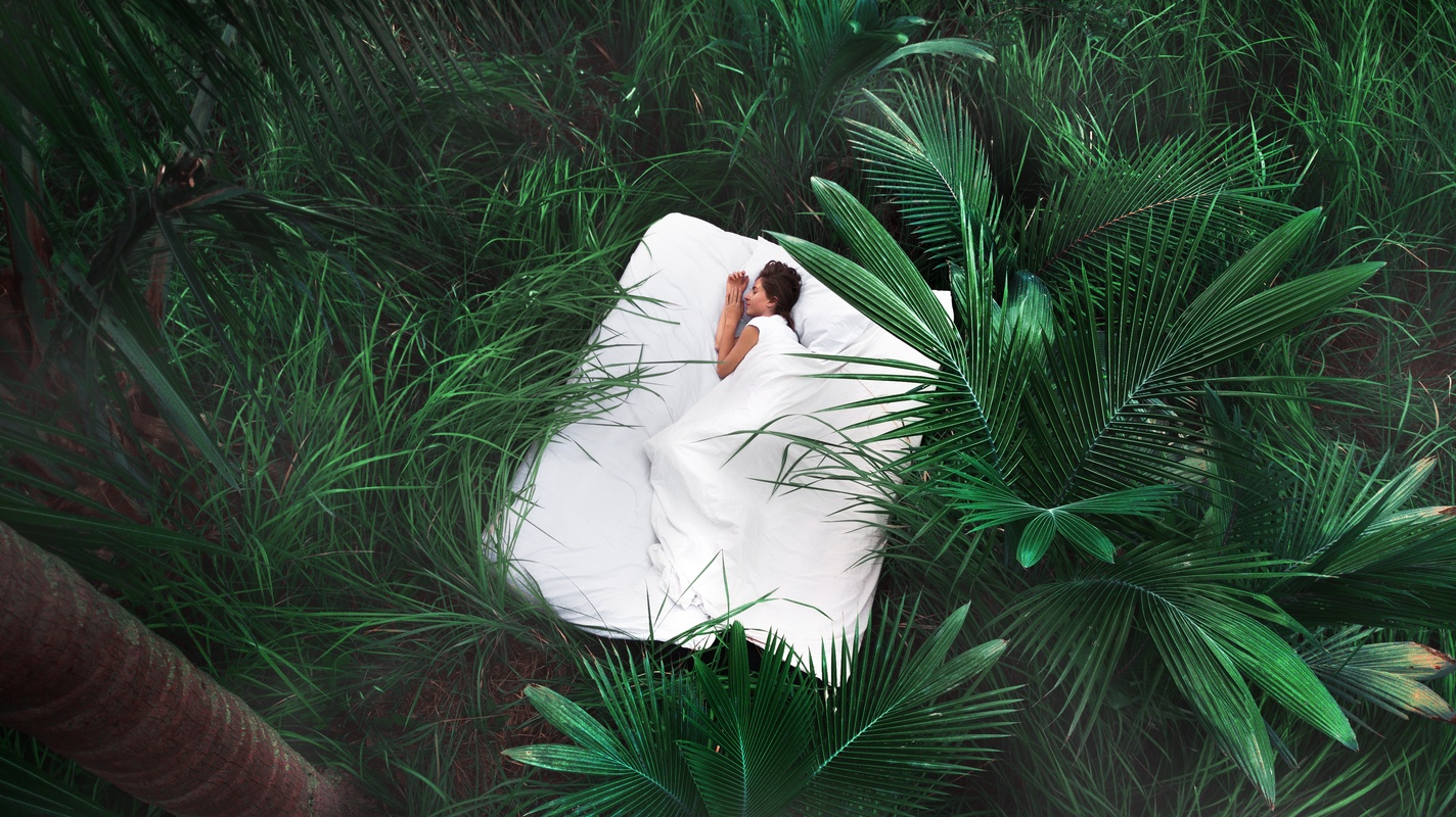 Natural sleep aids can help us sleep better, and might have fewer side effects. Photo: A fantasy image of a woman curledd on a bed in white sheets, among thick lush jungle greenery.