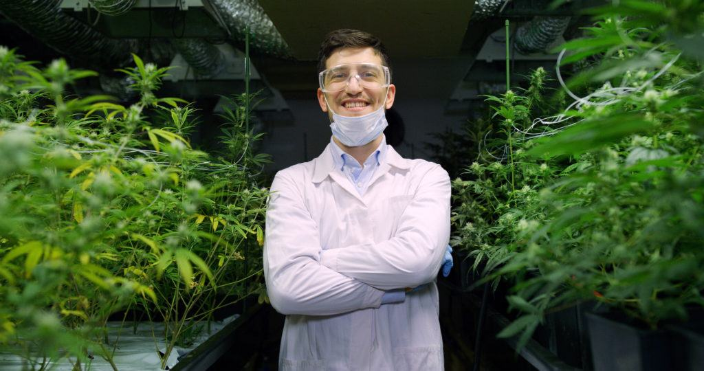 Photo: A CBD industry worker smiles with arms crossed, standing between rows of hemp plants in a greenhouse. He's wearing a lab coat and aa mask pulled down to his chin.