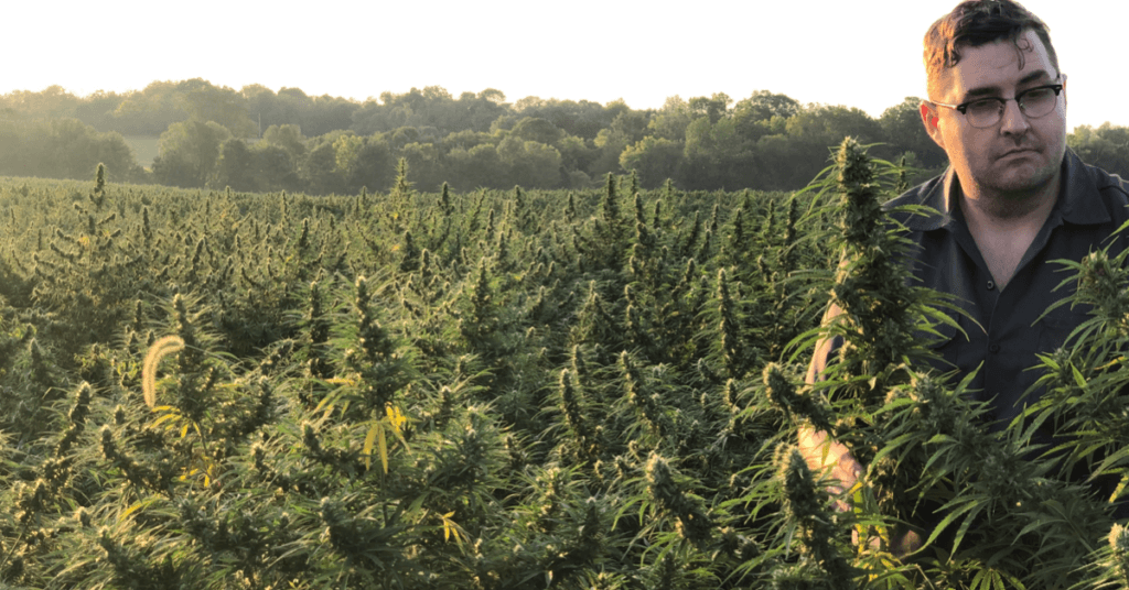 Photo: Jim Higdon inspects a hemp field, standing outdoors among tall, densely packed plants.