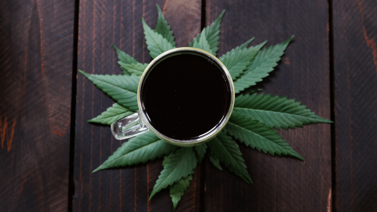 Science still has a lot to learn about combining CBD and caffeine. Photo: A cup of coffee decoratively sitting atop a pile of hemp leaves on a wooden table.