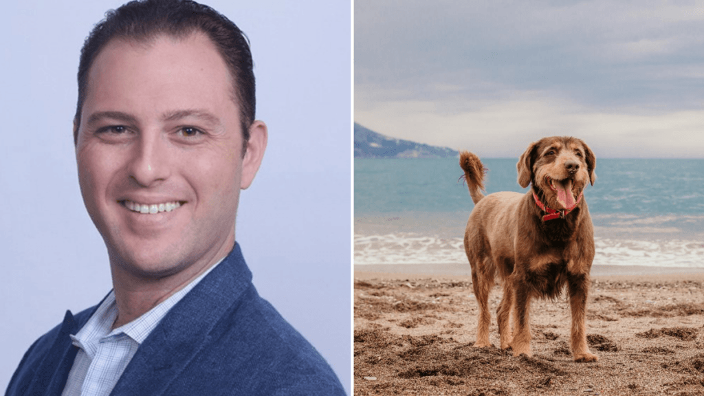 Photo: A composite image showing, on the left, Dr. Matthew Halpert, a young white man with short dark brown hair, smiling, wearing a formal shirt and jacket. To the right, an older brown-furred dog plays on the beach. Dr. Matthew Halpert coauthored a study which looked at whether CBD could help older dogs with arthritis.
