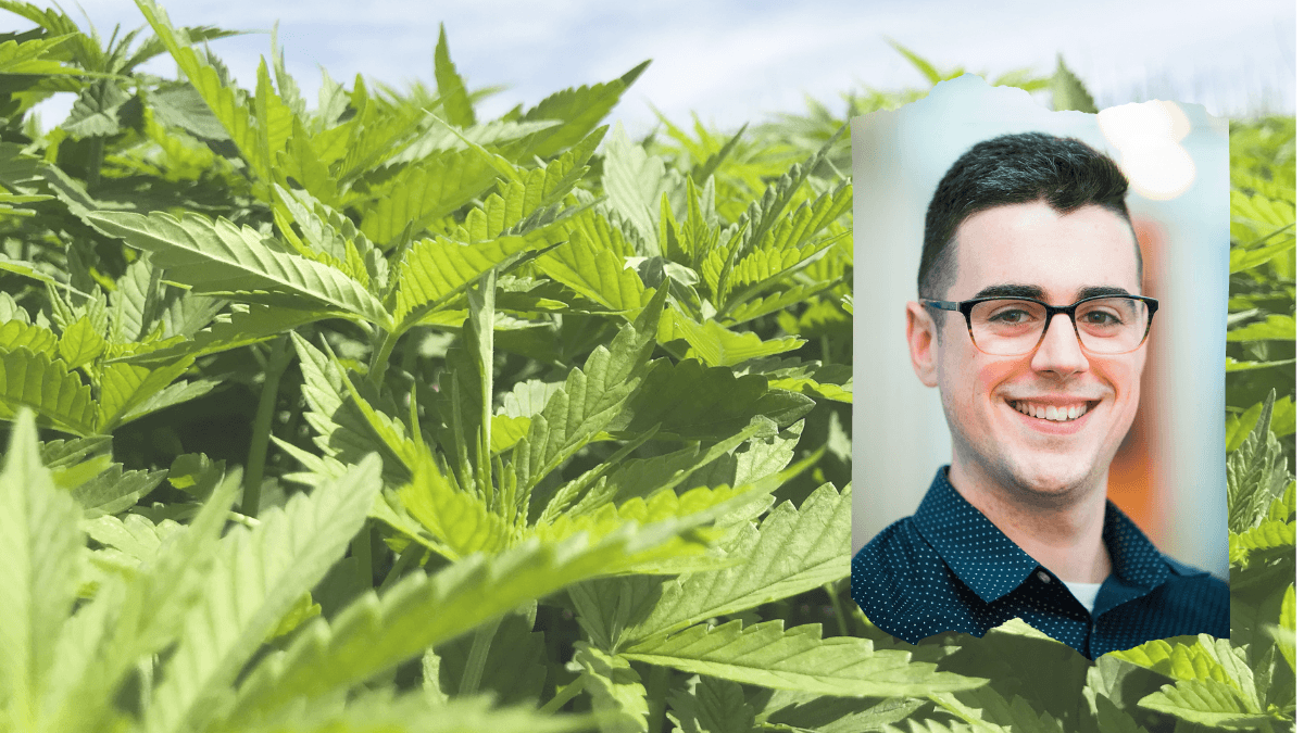 Photo: An outdoor hemp field, full of densely packed, bright green hemp plants. In an inset photo, a headshot of Connor Skelly, the marketing director at Brightfield Group.