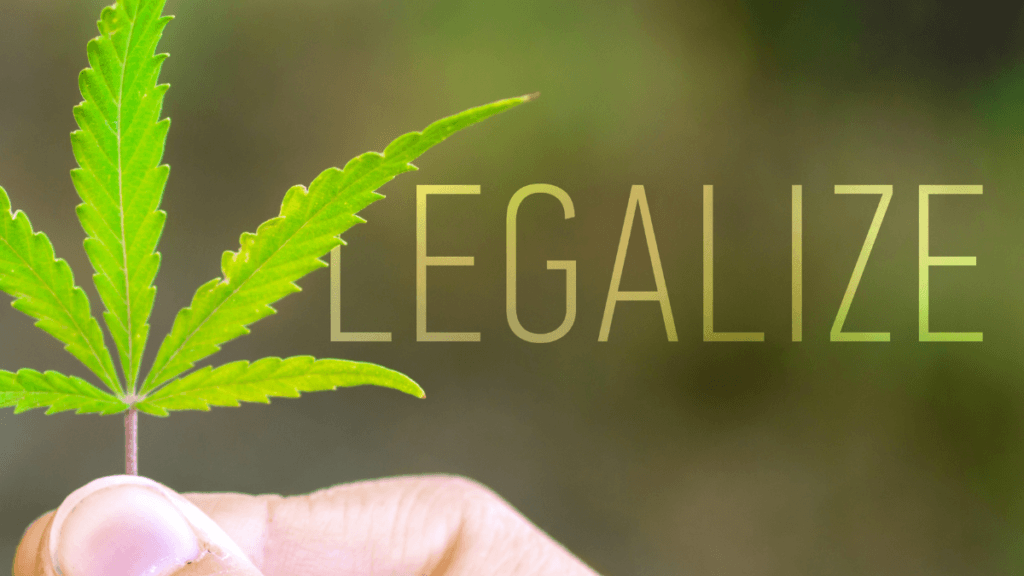 """Voters chose cannabis legalization in election 2020. What does that mean for the future of industrial hemp? Photo: A whiite person's hand holds up a hemp leaf, with the word """"Legalize"""" added next to it. Cannabis election"""